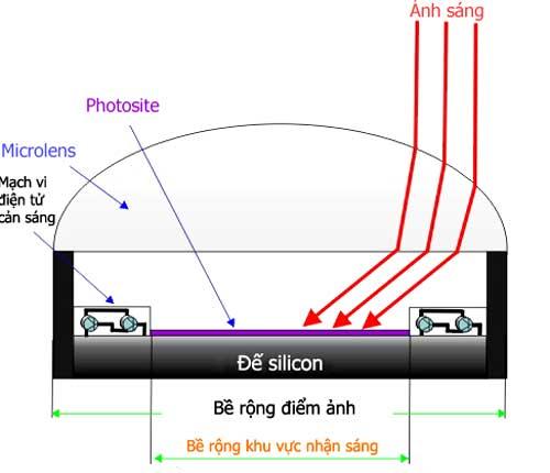 Cấu tạo và nguyên lí chuyển đổi tín hiệu của cảm biến máy ảnh