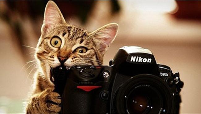 Những quan niệm sai lầm về máy ảnh