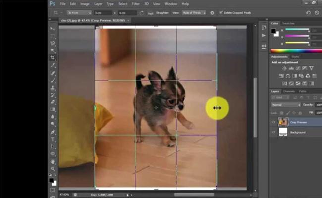 Crop ảnh sẽ thay đổi bức hình của bạn như thế nào?