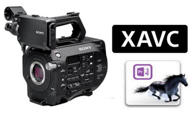 Mười lý do thuyết phục nên sử dụng định dạng video XAVC của máy quay Sony