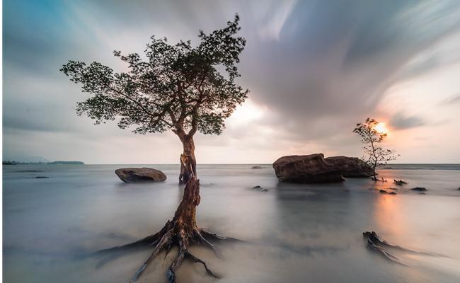 10 kỹ thuật chụp ảnh ấn tượng mà bạn nên biết