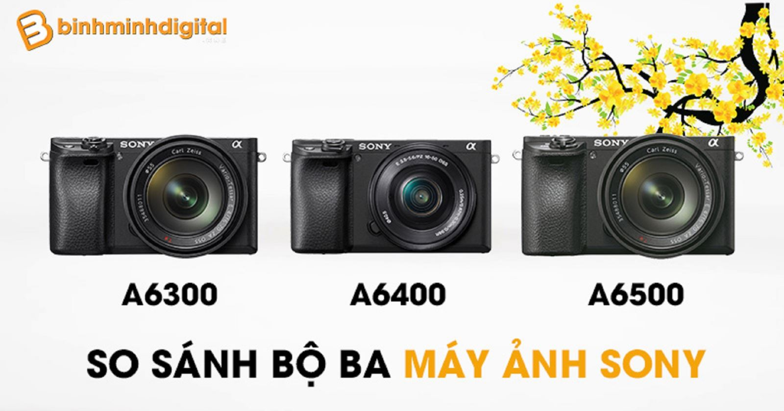 So sánh bộ bamáy ảnh Sony A6400 vs Sony A6300 vs Sony A6500