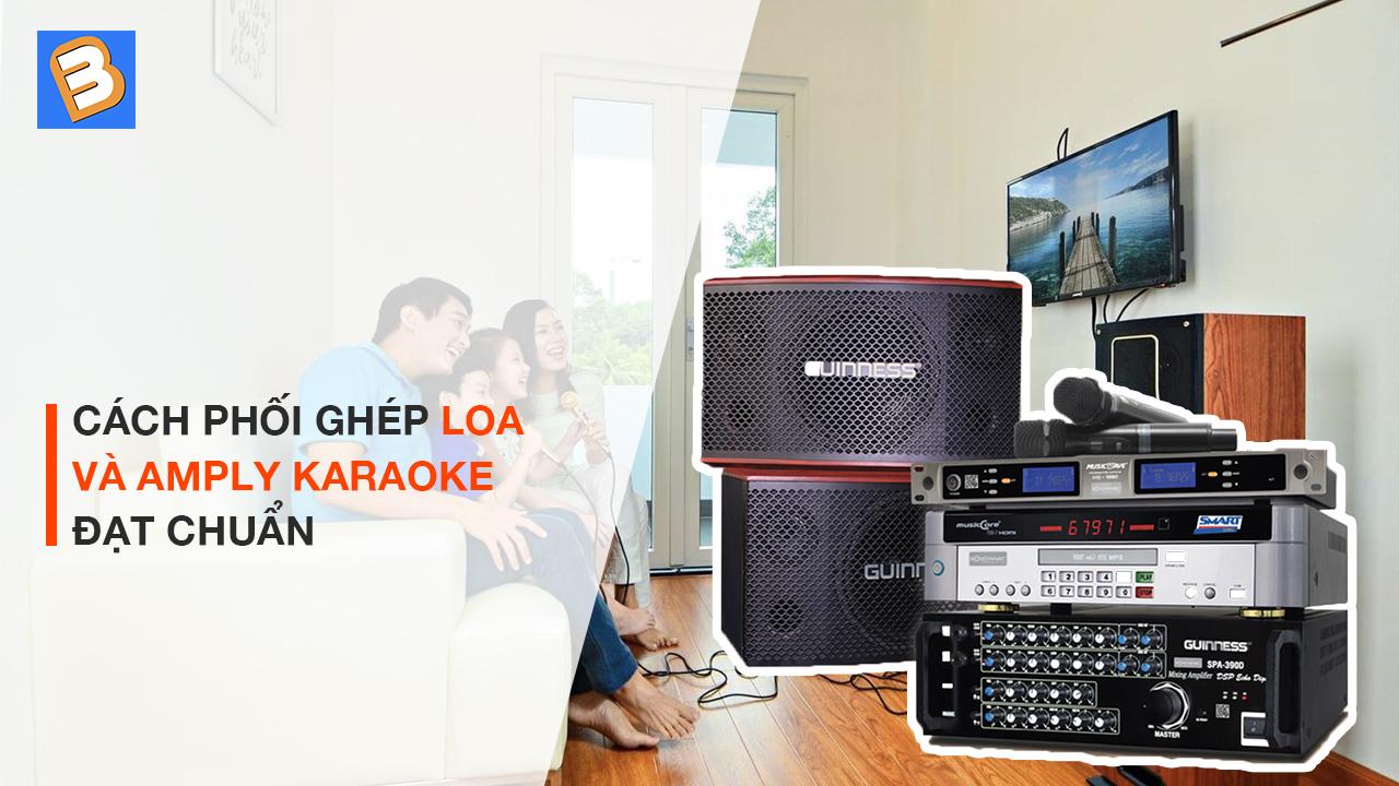 cach-phoi-ghep-loa-va-amly-karaoke-dat-chuan-Binhminhdigital-3.jpg
