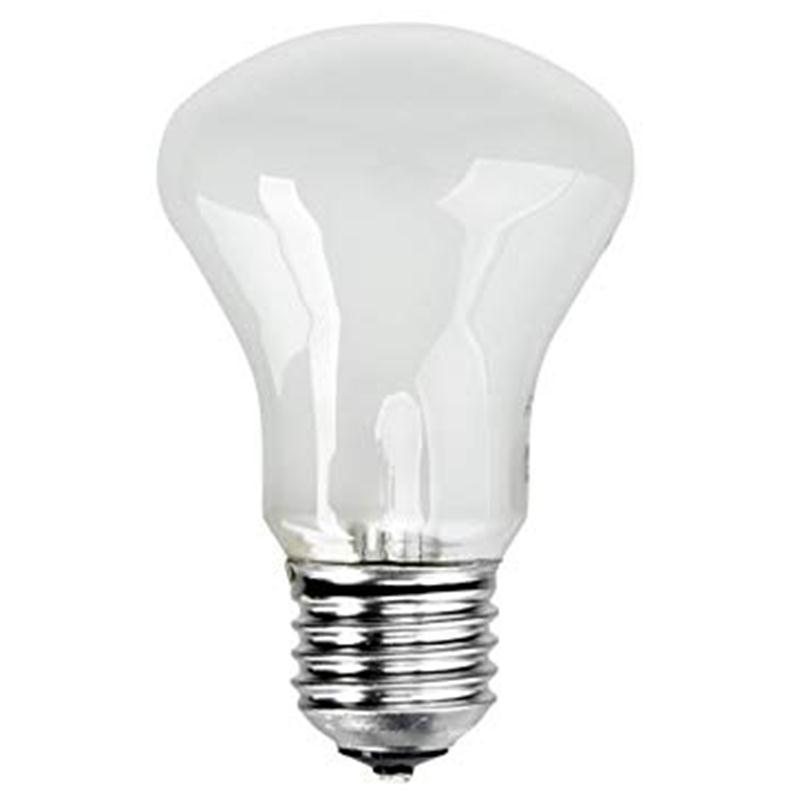 lamp-100-w-196v-e27