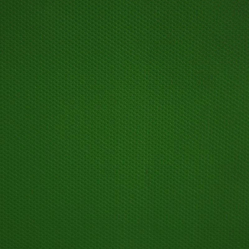 phong-vai-3mx1m-xanh-la-dam