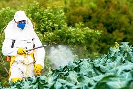 Cách loại bỏ dư lượng thuốc trừ sâu trên các loại trái cây và rau quả