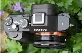 Có thể Sony sẽ ra mắt A7s III hoặc A9s cùng ống kính 20mm F/2.8E-mouth Full frame
