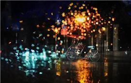 Sáng tạo hơn với kiểu chụp ảnh bokeh dưới trời mưa